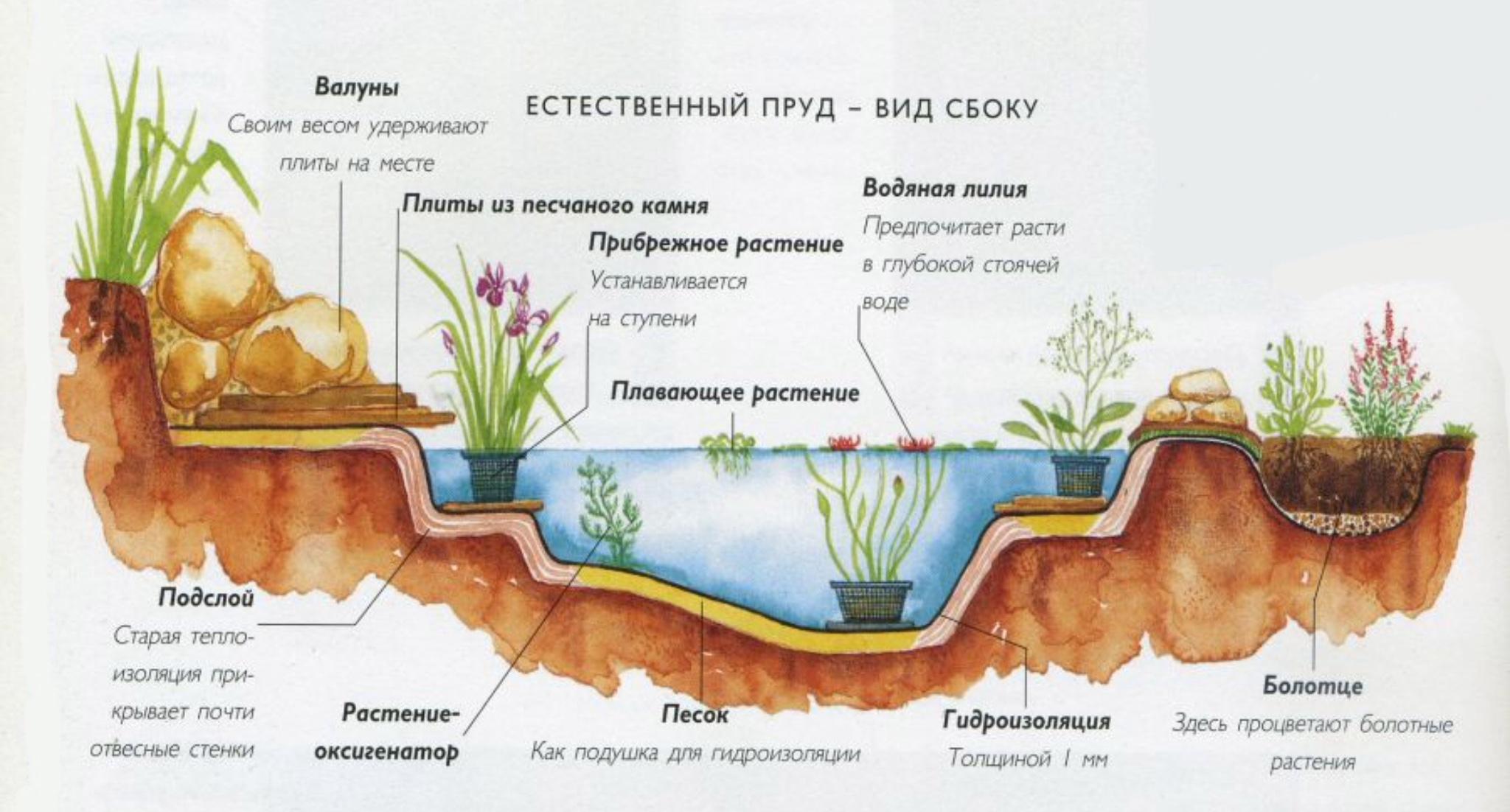 Схема фильтрации воды в пруду